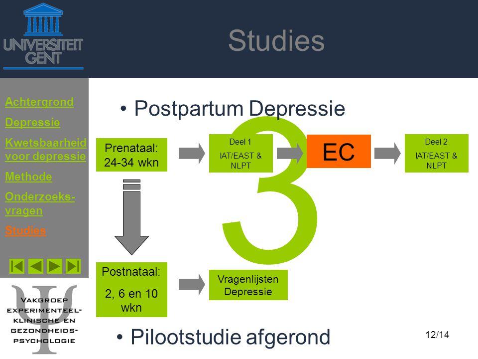 Doctoraatspresentatie Erik Franck 12 mei 200412/14 Studies 3 Postpartum Depressie Achtergrond Depressie Kwetsbaarheid voor depressie Methode Onderzoek