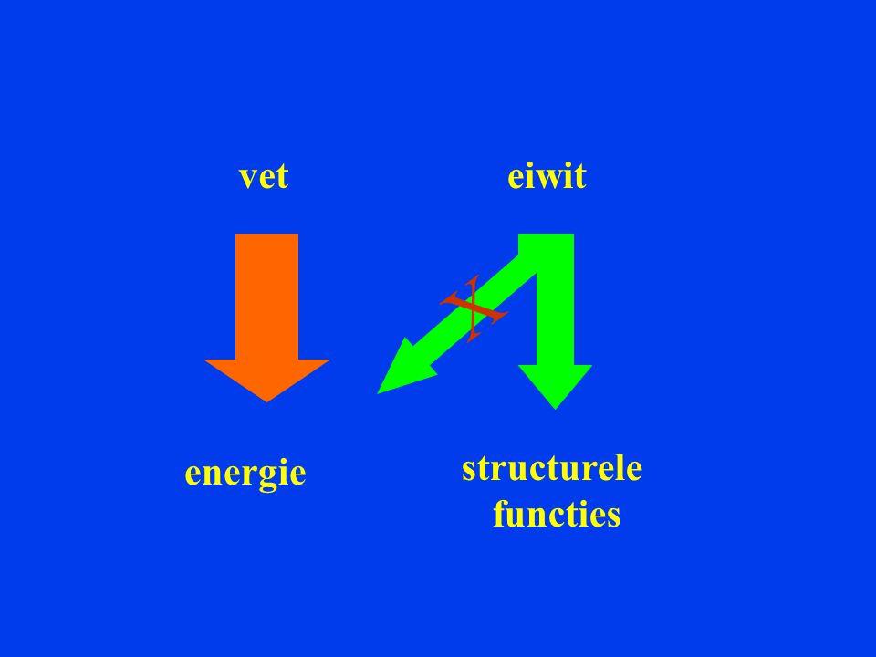 veteiwit energie structurele functies X