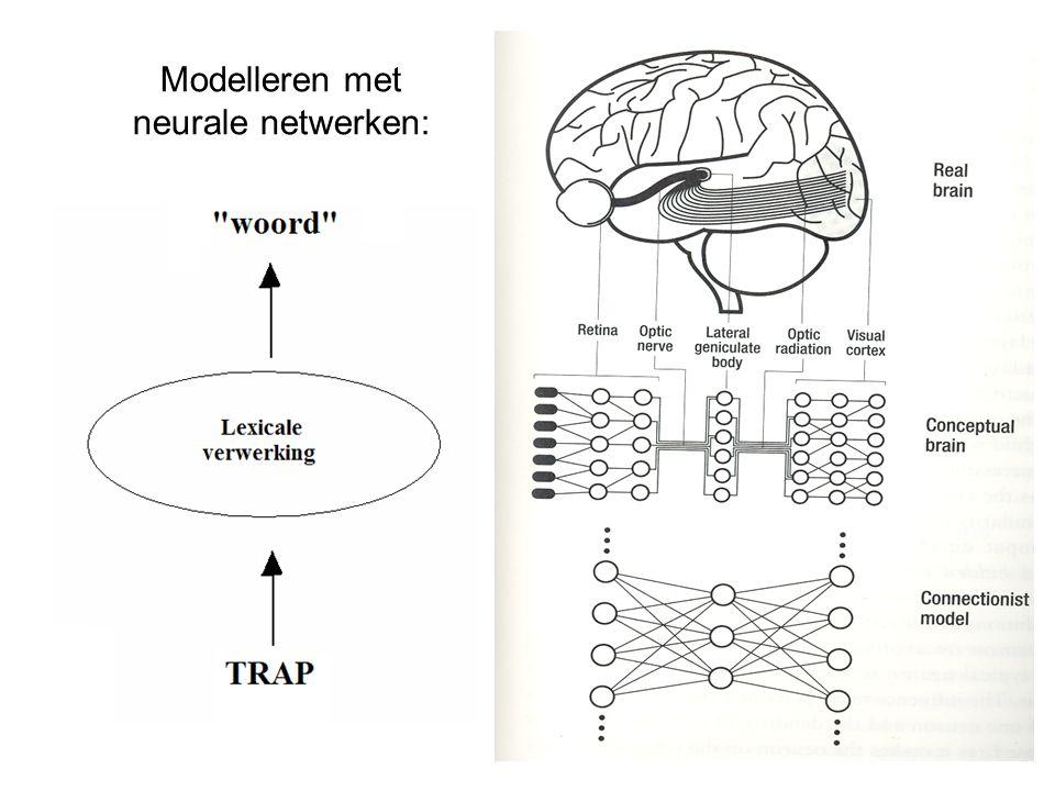 Interactief Activatie Model: McClelland & Rumelhart, 1981