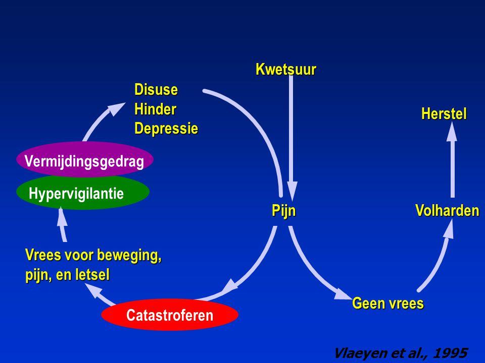 PijnVolharden Herstel DisuseHinderDepressie Kwetsuur Geen vrees Geen vrees Vrees voor beweging, pijn, en letsel Vlaeyen et al., 1995 Catastroferen Hyp