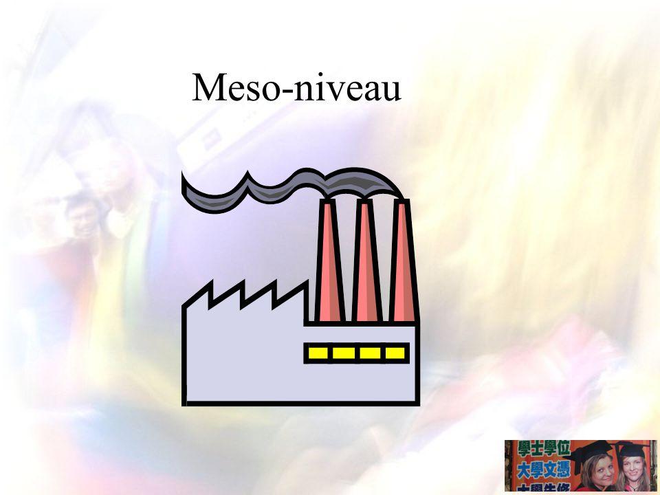 Meso-niveau