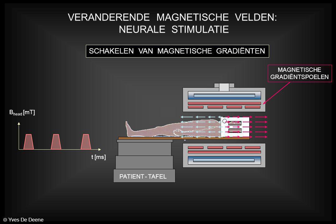 PATIENT - TAFEL MAGNETISCHE GRADIËNTSPOELEN VERANDERENDE MAGNETISCHE VELDEN: NEURALE STIMULATIE SCHAKELEN VAN MAGNETISCHE GRADIËNTEN B head [mT] t [ms