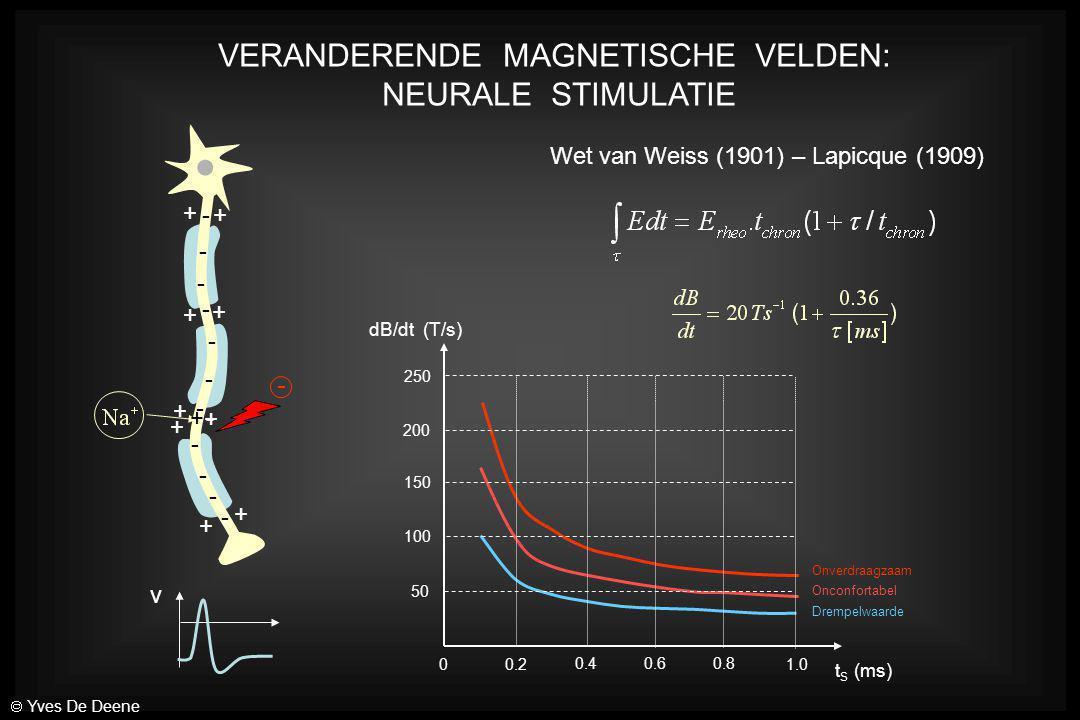 VERANDERENDE MAGNETISCHE VELDEN: NEURALE STIMULATIE + + + + + + + + + - - - - - - - - - - - - v + - - Wet van Weiss (1901) – Lapicque (1909) Onverdraa