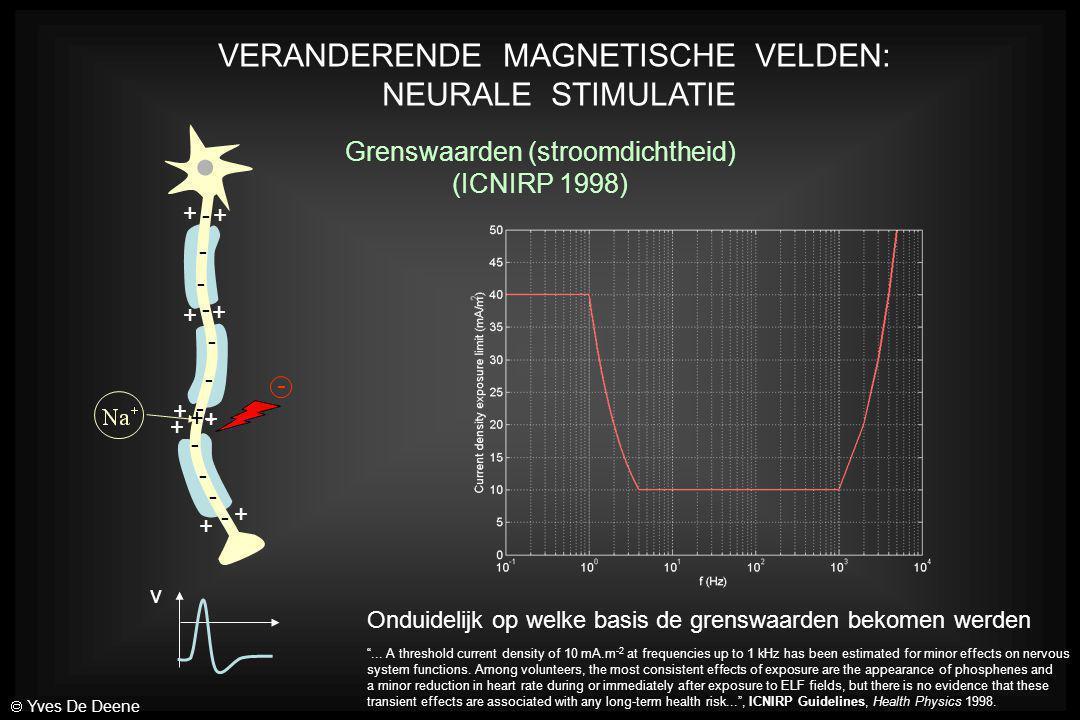 VERANDERENDE MAGNETISCHE VELDEN: NEURALE STIMULATIE + + + + + + + + + - - - - - - - - - - - - v + - - Grenswaarden (stroomdichtheid) (ICNIRP 1998) Ond