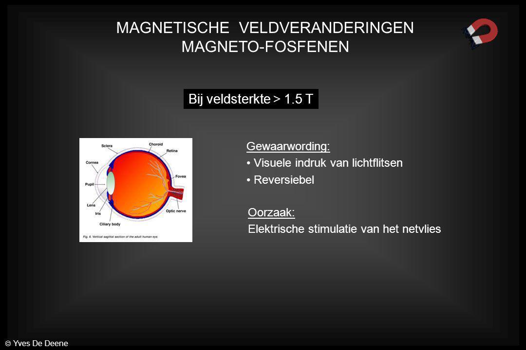 MAGNETISCHE VELDVERANDERINGEN MAGNETO-FOSFENEN Bij veldsterkte > 1.5 T Gewaarwording: Visuele indruk van lichtflitsen Reversiebel Oorzaak: Elektrische