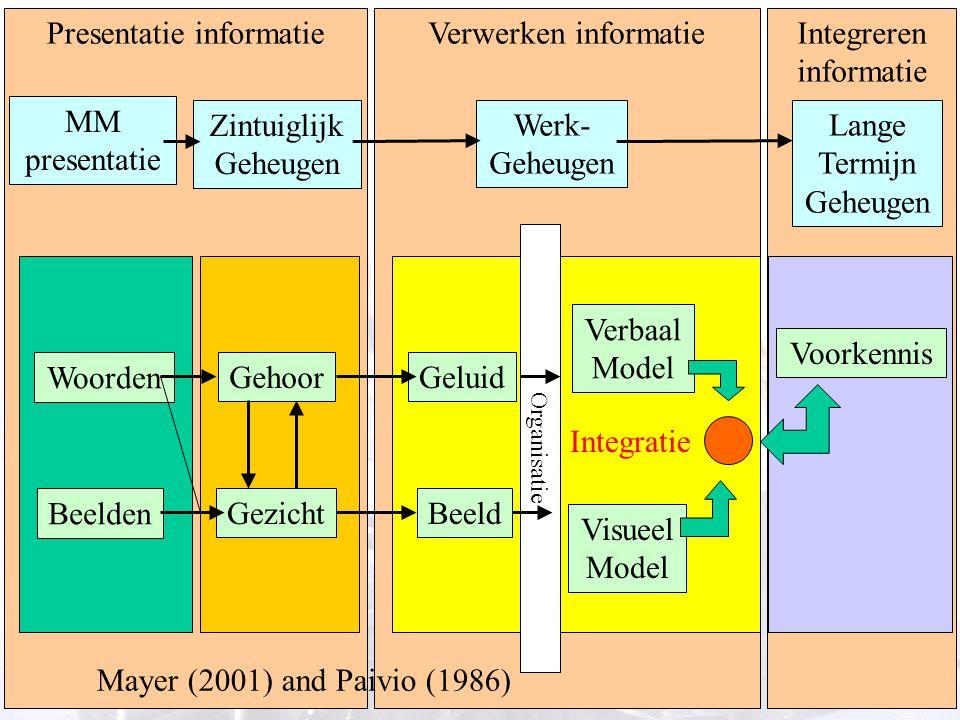 13 Presentatie informatieVerwerken informatieIntegreren informatie MM presentatie Zintuiglijk Geheugen Werk- Geheugen Lange Termijn Geheugen Woorden B