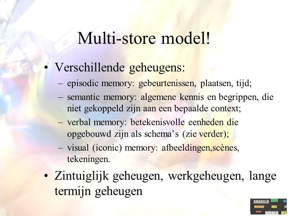 Multi-store model.