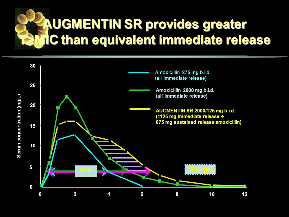 4 mg/L 26% AUGMENTIN SR provides greater T>MIC than equivalent immediate release Serum concentration (mg/L) Time (h) Amoxicillin 2000 mg b.i.d. (all i