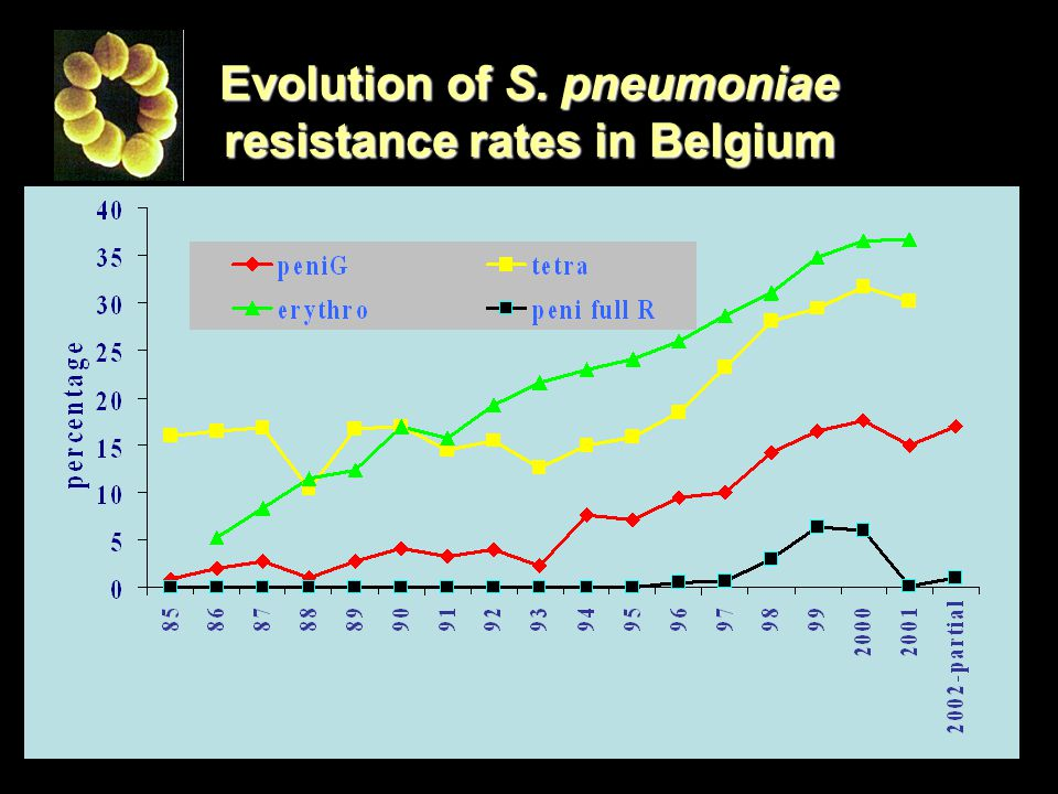 Evolution of S. pneumoniae resistance rates in Belgium