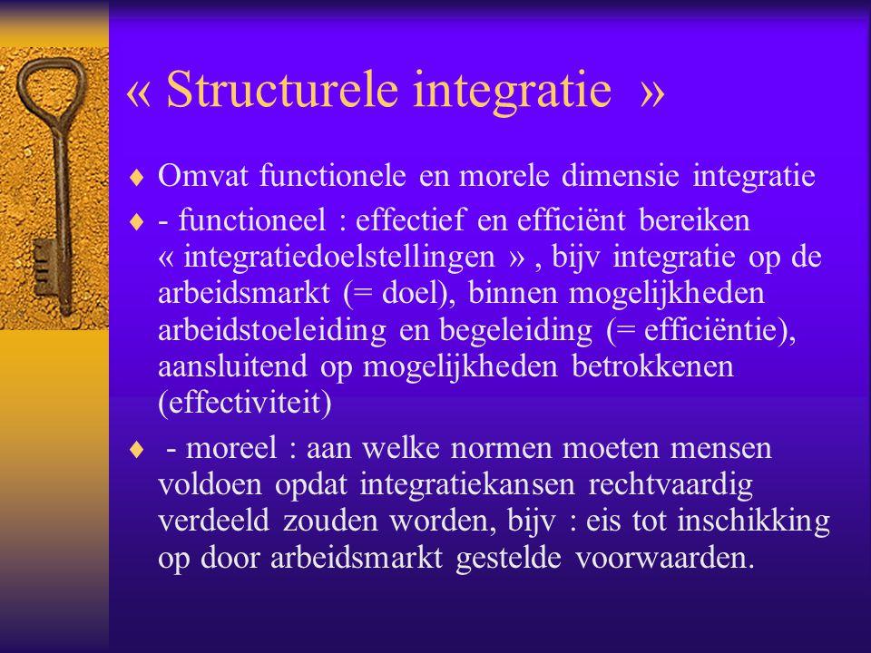 « Structurele integratie »  Omvat functionele en morele dimensie integratie  - functioneel : effectief en efficiënt bereiken « integratiedoelstellin