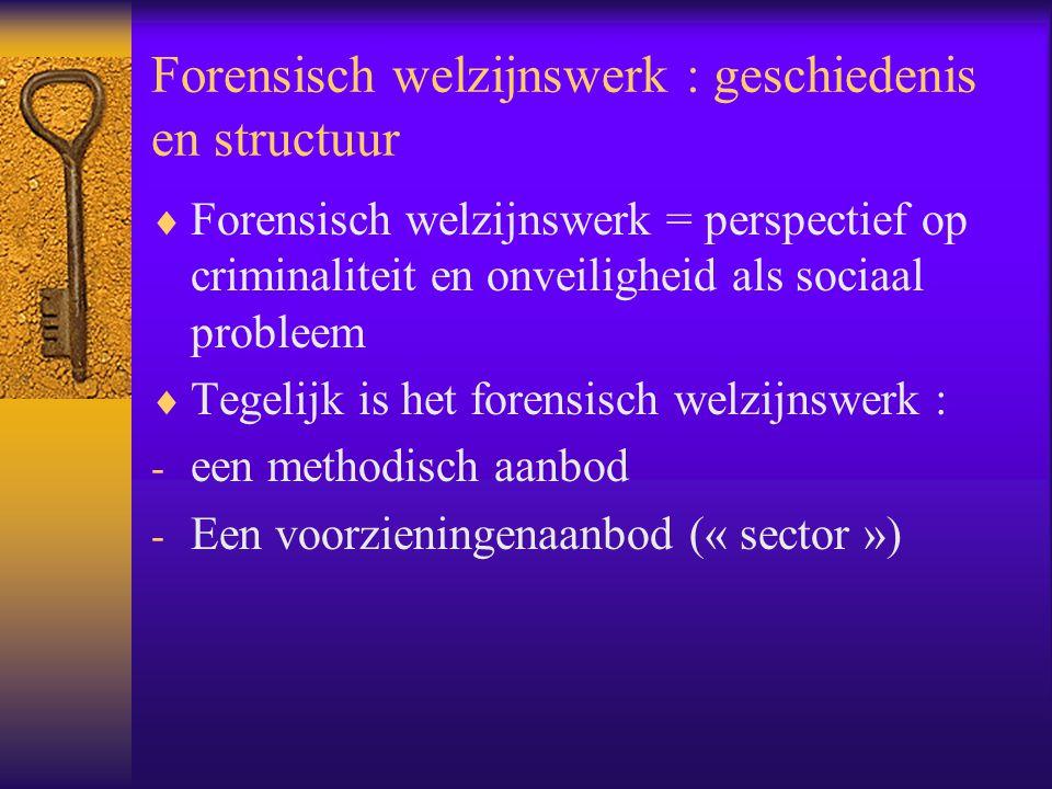 Forensisch welzijnswerk : geschiedenis en structuur  Forensisch welzijnswerk = perspectief op criminaliteit en onveiligheid als sociaal probleem  Te