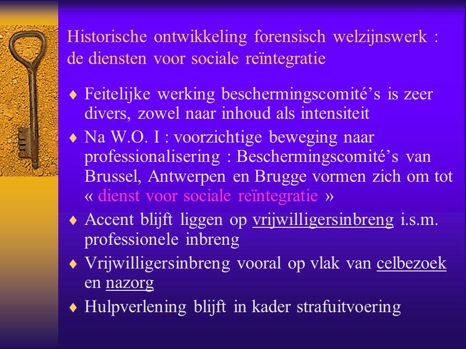 Historische ontwikkeling forensisch welzijnswerk : de diensten voor sociale reïntegratie  Feitelijke werking beschermingscomité's is zeer divers, zow