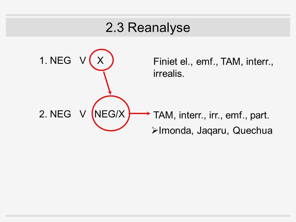 2.3 Reanalyse 1. NEGV X 2. NEGV NEG/X Finiet el., emf., TAM, interr., irrealis. TAM, interr., irr., emf., part.  Imonda, Jaqaru, Quechua
