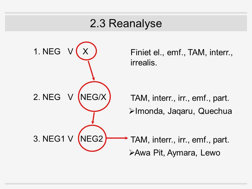 2.3 Reanalyse 1. NEGV X 2. NEGV NEG/X 3. NEG1V NEG2 Finiet el., emf., TAM, interr., irrealis. TAM, interr., irr., emf., part.  Imonda, Jaqaru, Quechu
