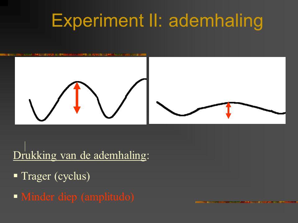 Experiment II: ademhaling Drukking van de ademhaling:  Trager (cyclus)  Minder diep (amplitudo)