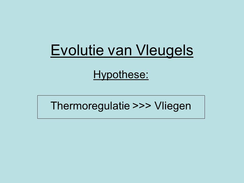 Evolutie van Vleugels Hypothese: Thermoregulatie >>> Vliegen