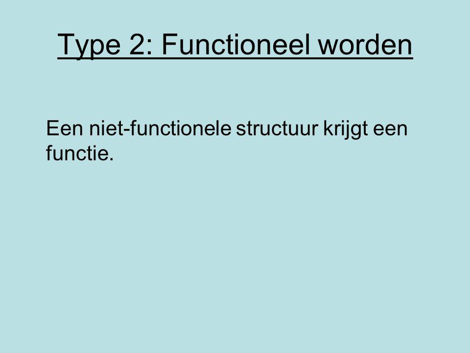 Type 2: Functioneel worden Een niet-functionele structuur krijgt een functie.