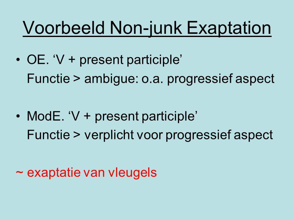 Voorbeeld Non-junk Exaptation OE. 'V + present participle' Functie > ambigue: o.a. progressief aspect ModE. 'V + present participle' Functie > verplic