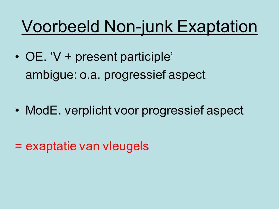 Voorbeeld Non-junk Exaptation OE. 'V + present participle' ambigue: o.a. progressief aspect ModE. verplicht voor progressief aspect = exaptatie van vl