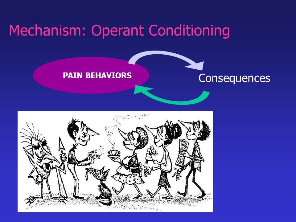 PAIN BEHAVIORS Consequences Mechanism: Operant Conditioning