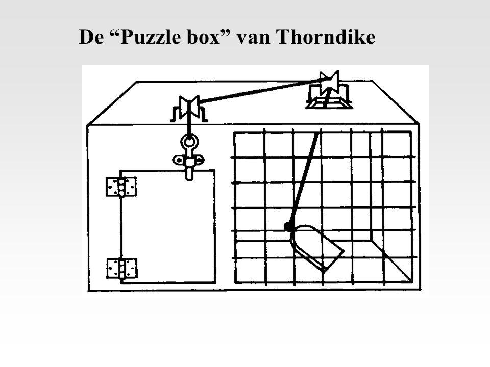 """De """"Puzzle box"""" van Thorndike"""