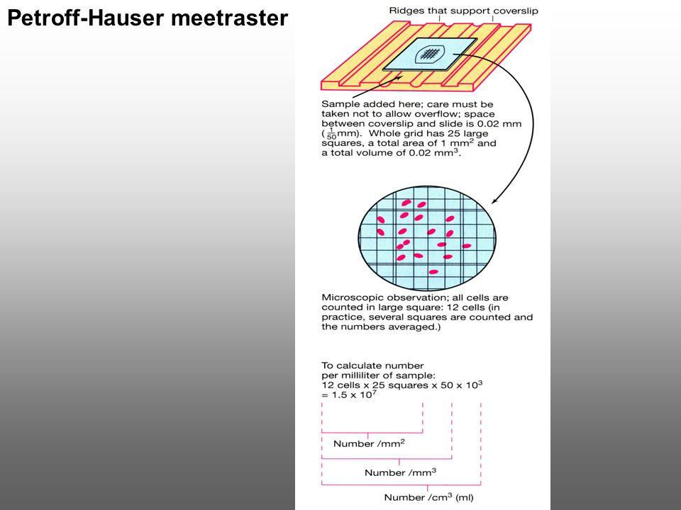Petroff-Hauser meetraster