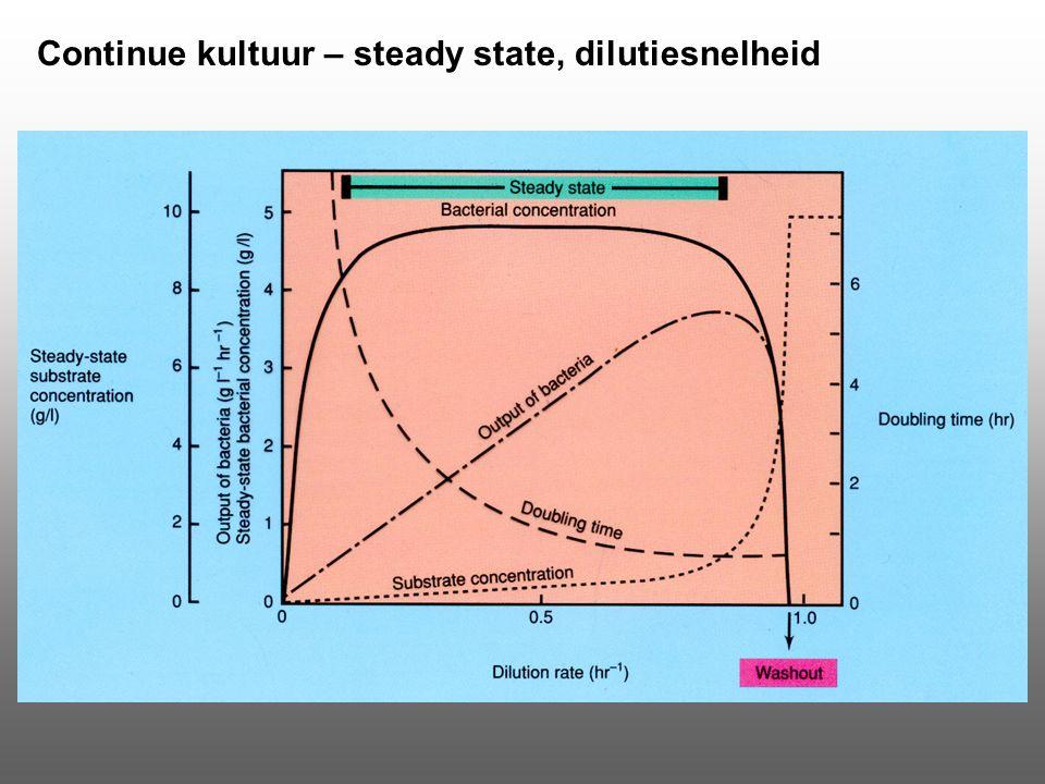 Continue kultuur – steady state, dilutiesnelheid