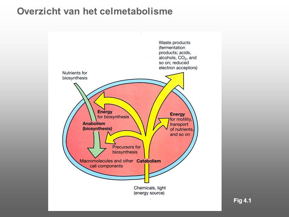 Overzicht van het celmetabolisme Fig 4.1