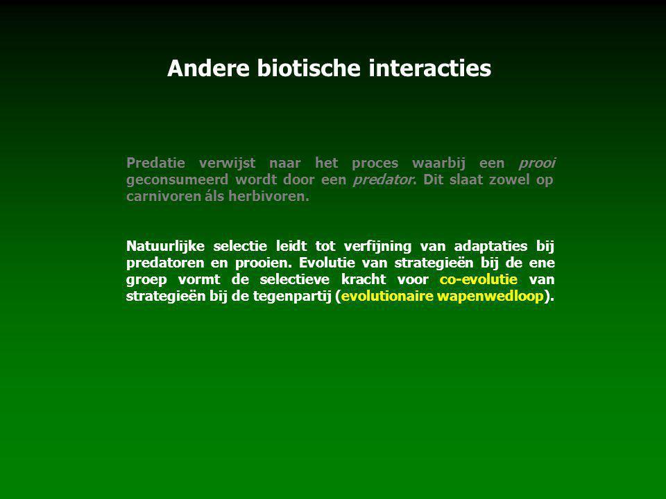 Andere biotische interacties Predatie verwijst naar het proces waarbij een prooi geconsumeerd wordt door een predator. Dit slaat zowel op carnivoren á