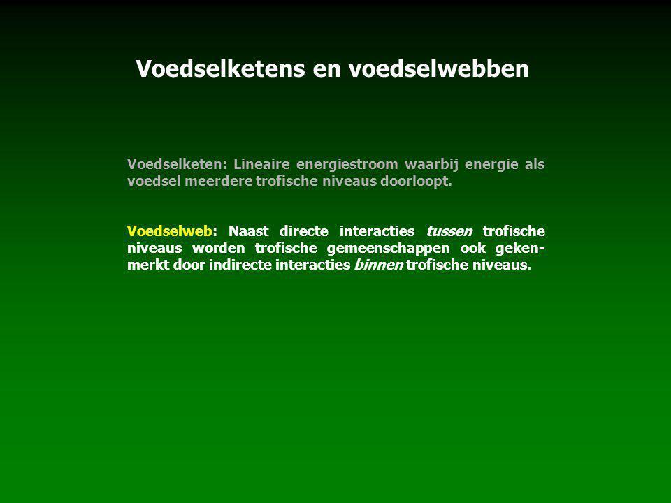 Voedselketen: Lineaire energiestroom waarbij energie als voedsel meerdere trofische niveaus doorloopt.