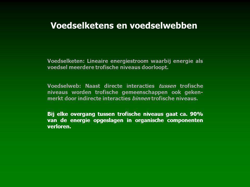 Voedselketen: Lineaire energiestroom waarbij energie als voedsel meerdere trofische niveaus doorloopt. Voedselweb: Naast directe interacties tussen tr