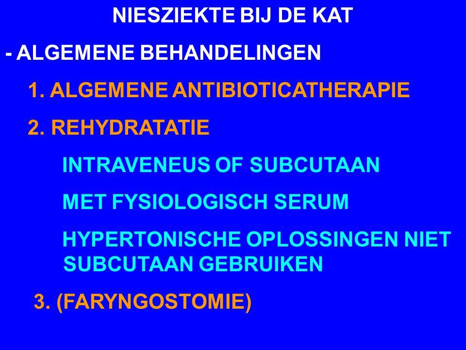 NIESZIEKTE BIJ DE KAT - ALGEMENE BEHANDELINGEN 1. ALGEMENE ANTIBIOTICATHERAPIE 2. REHYDRATATIE INTRAVENEUS OF SUBCUTAAN MET FYSIOLOGISCH SERUM HYPERTO