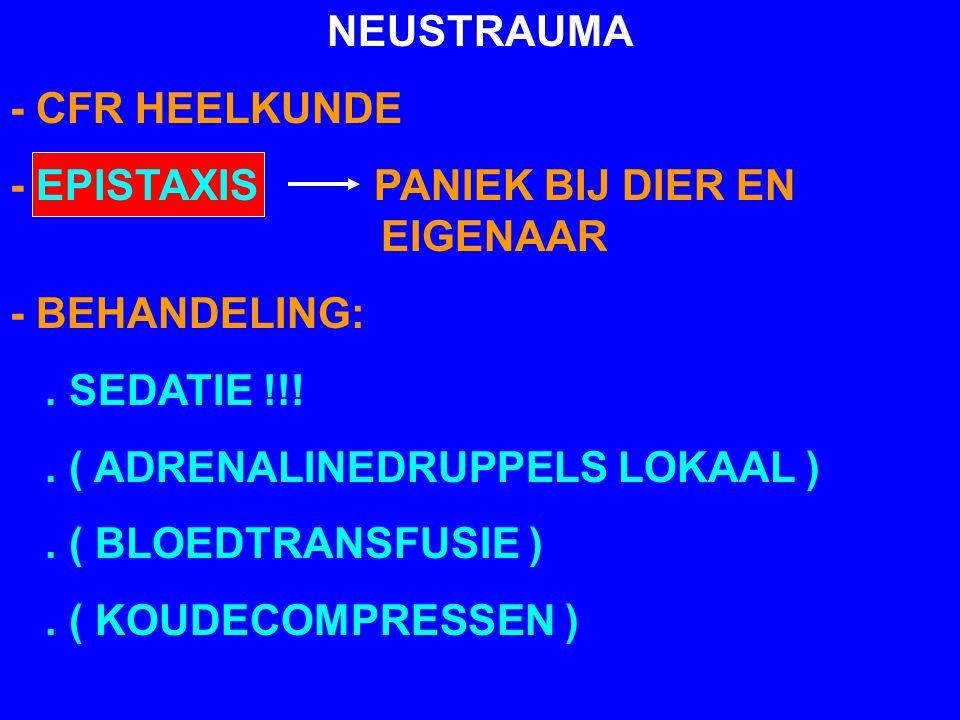 NEUSTRAUMA - CFR HEELKUNDE - EPISTAXIS PANIEK BIJ DIER EN EIGENAAR - BEHANDELING:. SEDATIE !!!. ( ADRENALINEDRUPPELS LOKAAL ). ( BLOEDTRANSFUSIE ). (