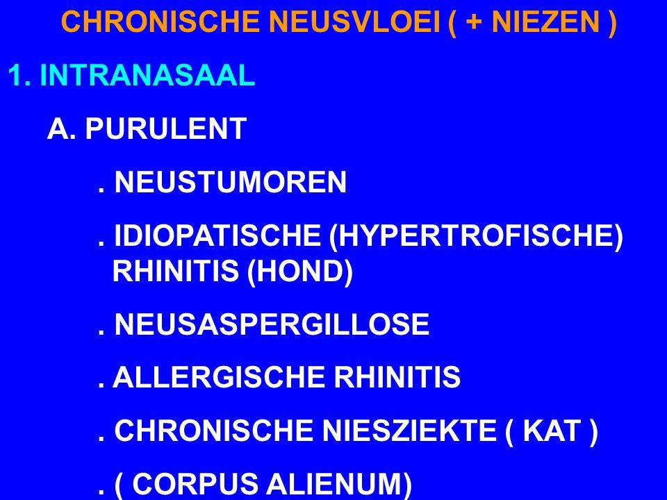 CHRONISCHE NEUSVLOEI ( + NIEZEN ) 1. INTRANASAAL A. PURULENT. NEUSTUMOREN. IDIOPATISCHE (HYPERTROFISCHE) RHINITIS (HOND). NEUSASPERGILLOSE. ALLERGISCH