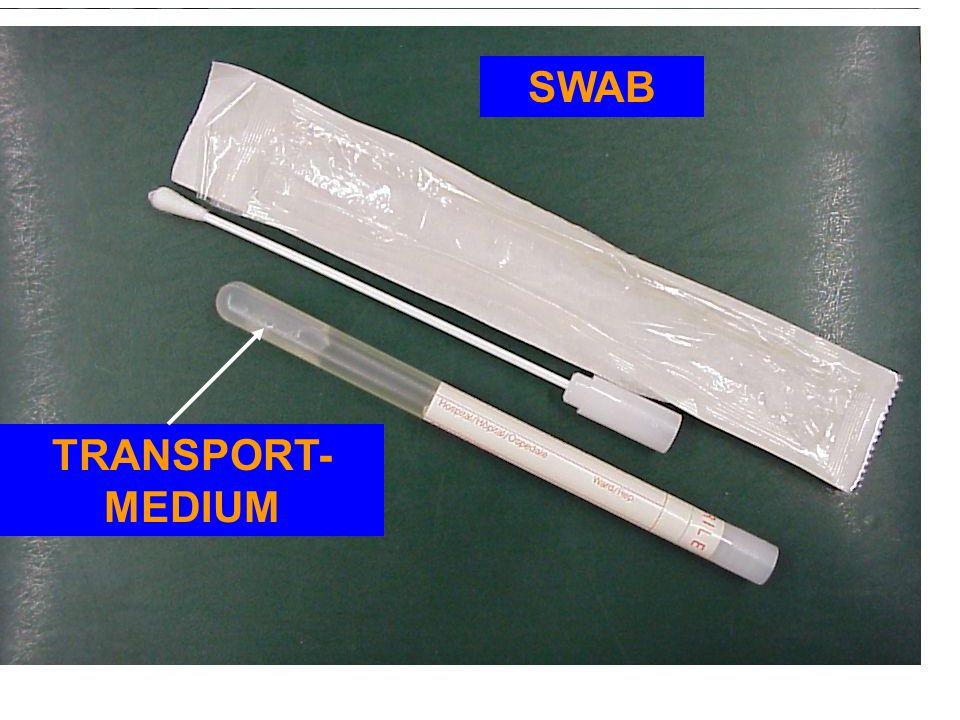 TRANSPORT- MEDIUM SWAB