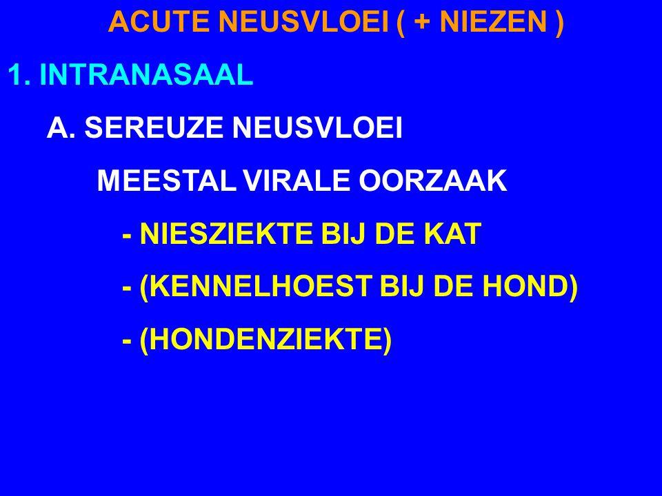 ACUTE NEUSVLOEI ( + NIEZEN ) 1. INTRANASAAL A. SEREUZE NEUSVLOEI MEESTAL VIRALE OORZAAK - NIESZIEKTE BIJ DE KAT - (KENNELHOEST BIJ DE HOND) - (HONDENZ