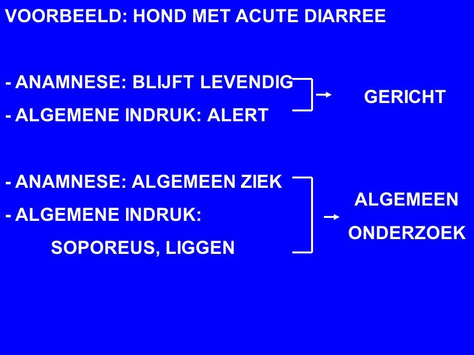 HOOFDSTUK 7: ALGEMENE INDRUK VOORBEELD: HOND MET ACUTE DIARREE - ANAMNESE: BLIJFT LEVENDIG - ALGEMENE INDRUK: ALERT - ANAMNESE: ALGEMEEN ZIEK - ALGEMENE INDRUK: SOPOREUS, LIGGEN GERICHT ALGEMEEN ONDERZOEK