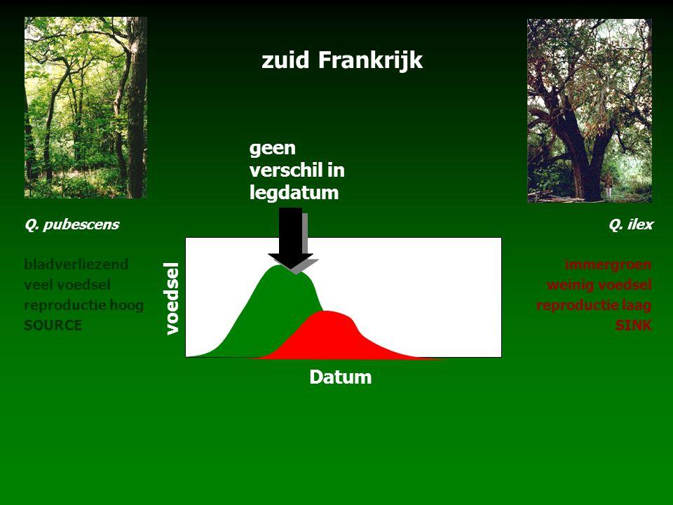 Datum Q. pubescens bladverliezend veel voedsel reproductie hoog SOURCE Q. ilex immergroen weinig voedsel reproductie laag SINK geen verschil in legdat
