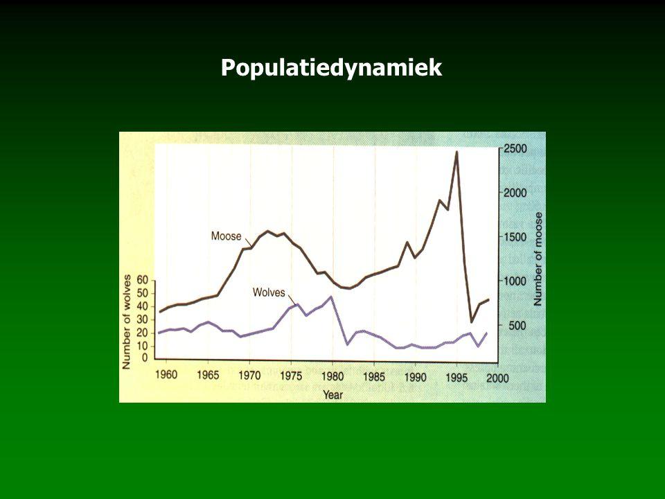 Populatiedynamiek