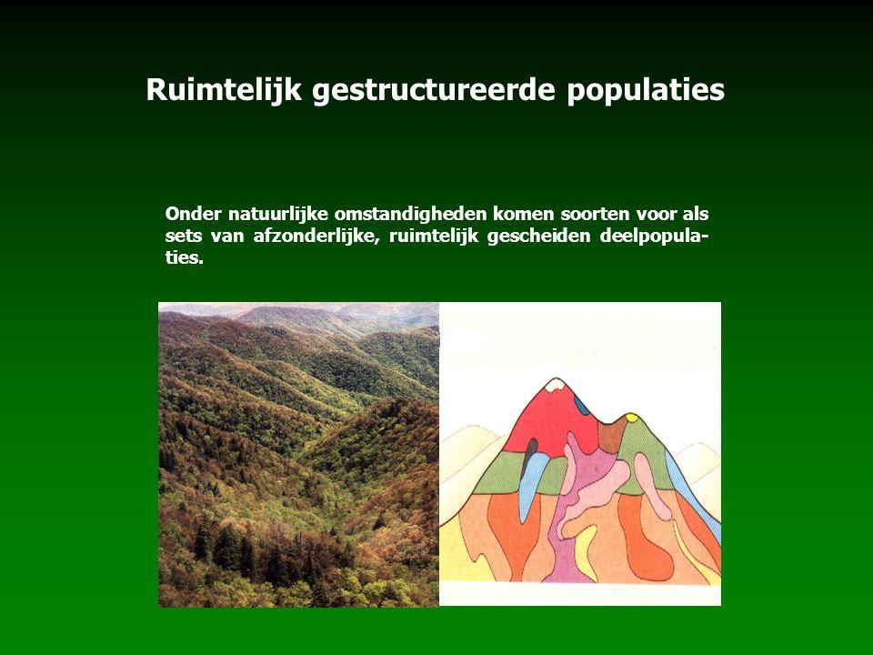 Ruimtelijk gestructureerde populaties Onder natuurlijke omstandigheden komen soorten voor als sets van afzonderlijke, ruimtelijk gescheiden deelpopula