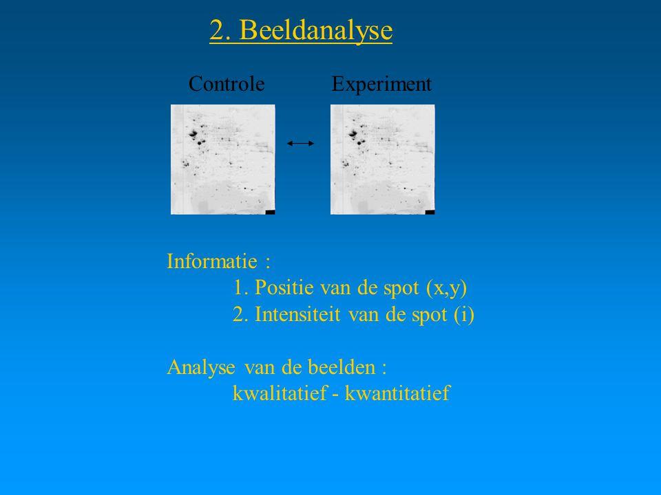 2. Beeldanalyse ControleExperiment Informatie : 1. Positie van de spot (x,y) 2. Intensiteit van de spot (i) Analyse van de beelden : kwalitatief - kwa