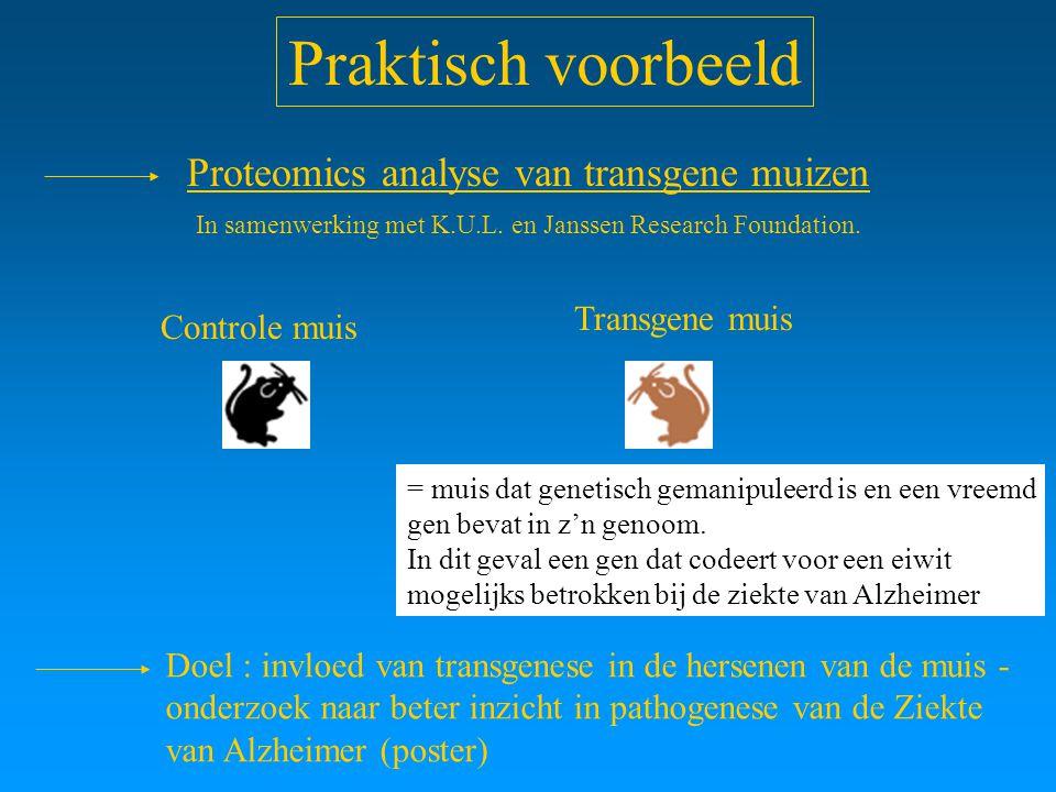 Praktisch voorbeeld Controle muis Transgene muis Doel : invloed van transgenese in de hersenen van de muis - onderzoek naar beter inzicht in pathogene