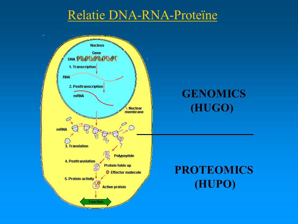 Relatie DNA-RNA-Proteïne GENOMICS (HUGO) PROTEOMICS (HUPO)
