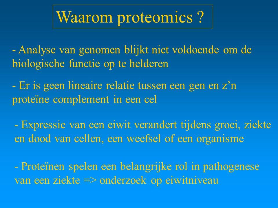 Waarom proteomics ? - Analyse van genomen blijkt niet voldoende om de biologische functie op te helderen - Er is geen lineaire relatie tussen een gen