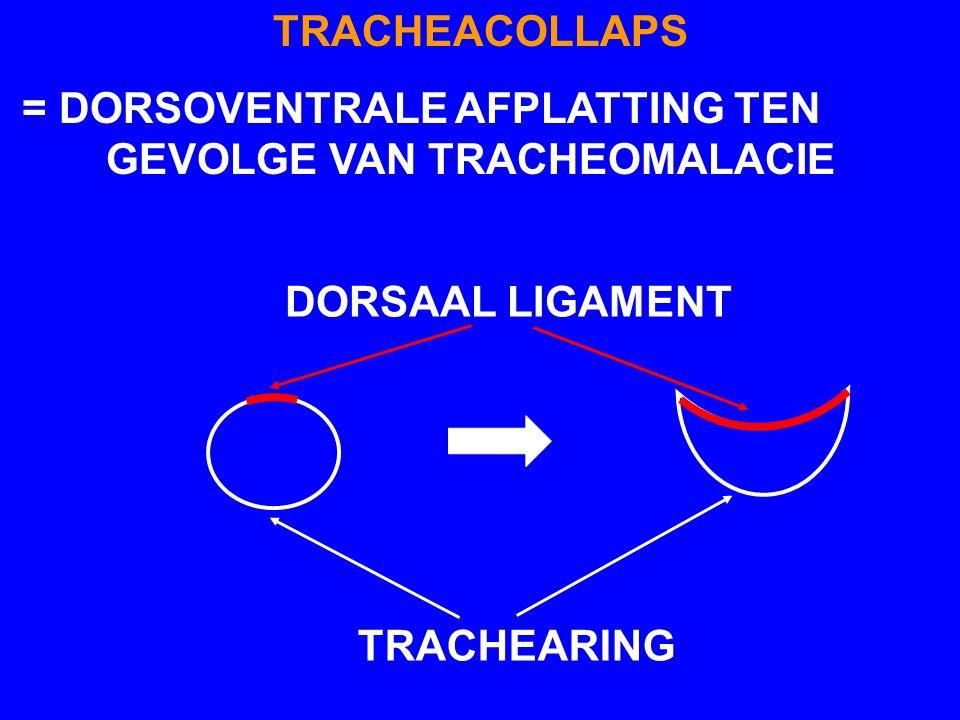 TRACHEACOLLAPS - NIET VERWARREN MET TRACHEAHYPOPLASIE = AANGEBOREN EN TRACHEARINGEN ZIJN MEESTAL STEVIG MAAR TE KLEIN - TRACHEACOLLAPS = VERWORVEN EN VOORNAMELIJK BIJ OUDERE DIEREN VAN MINIATUURRASSEN (O.A.