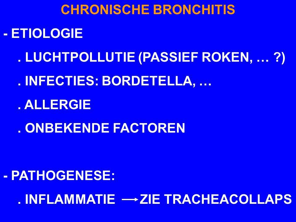 CHRONISCHE BRONCHITIS - ETIOLOGIE. LUCHTPOLLUTIE (PASSIEF ROKEN, … ?). INFECTIES: BORDETELLA, …. ALLERGIE. ONBEKENDE FACTOREN - PATHOGENESE:. INFLAMMA