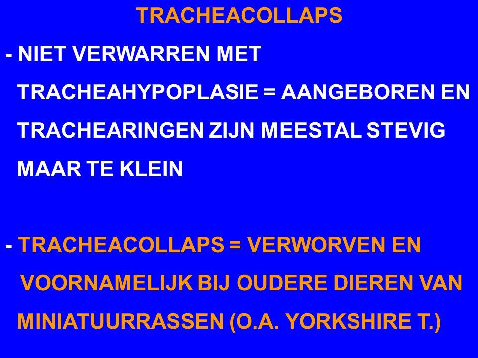 TRACHEACOLLAPS - NIET VERWARREN MET TRACHEAHYPOPLASIE = AANGEBOREN EN TRACHEARINGEN ZIJN MEESTAL STEVIG MAAR TE KLEIN - TRACHEACOLLAPS = VERWORVEN EN