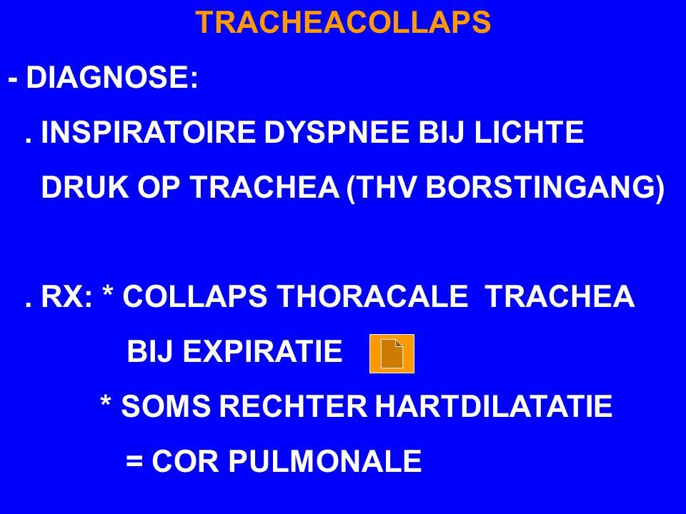 TRACHEACOLLAPS - DIAGNOSE:. INSPIRATOIRE DYSPNEE BIJ LICHTE DRUK OP TRACHEA (THV BORSTINGANG). RX: * COLLAPS THORACALE TRACHEA BIJ EXPIRATIE * SOMS RE