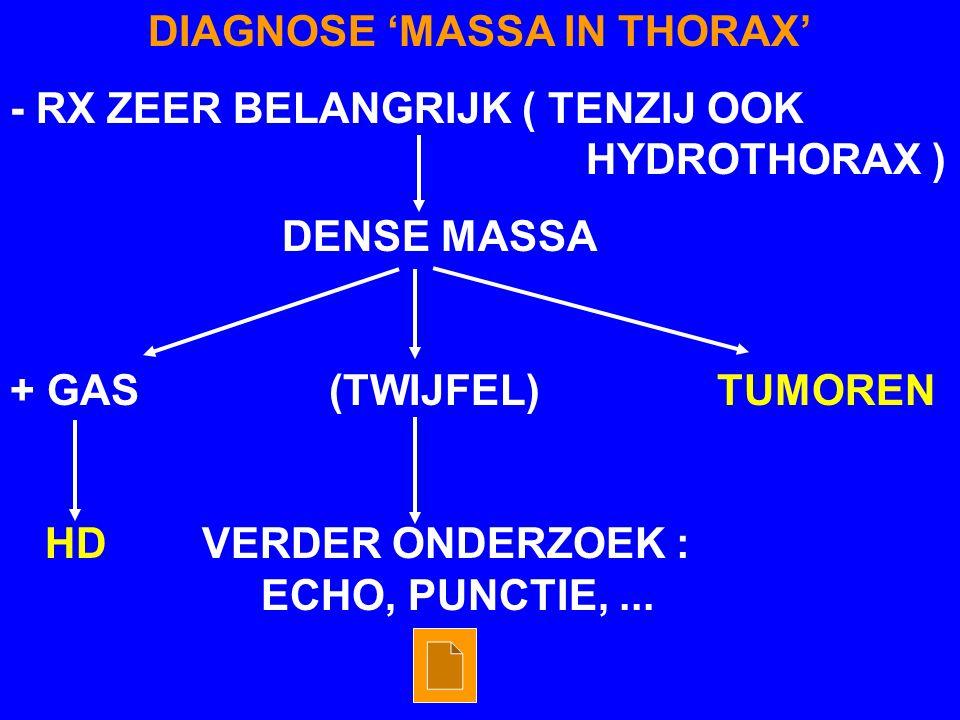 DIAGNOSE 'MASSA IN THORAX' - RX ZEER BELANGRIJK ( TENZIJ OOK HYDROTHORAX ) DENSE MASSA + GAS (TWIJFEL) TUMOREN HD VERDER ONDERZOEK : ECHO, PUNCTIE,...