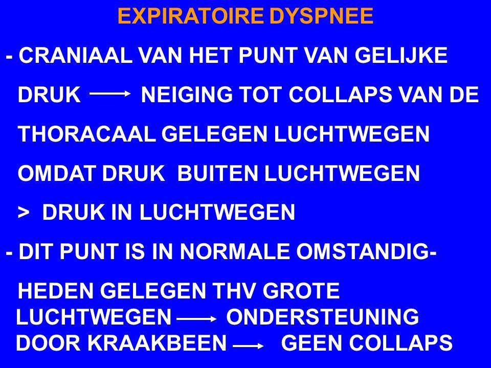 EXPIRATOIRE DYSPNEE - CRANIAAL VAN HET PUNT VAN GELIJKE DRUK NEIGING TOT COLLAPS VAN DE THORACAAL GELEGEN LUCHTWEGEN OMDAT DRUK BUITEN LUCHTWEGEN > DRUK IN LUCHTWEGEN - DIT PUNT IS IN NORMALE OMSTANDIG- HEDEN GELEGEN THV GROTE LUCHTWEGEN ONDERSTEUNING DOOR KRAAKBEEN GEEN COLLAPS